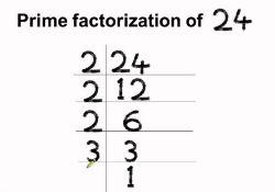 Prime factorisation of 24